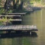 мостики_у_воды